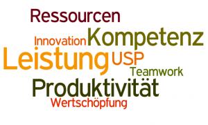 SCHWINGENSCHLÖGL CONSULTING_Werte & Philosophie bei Human Resources & Unternehmensberatung